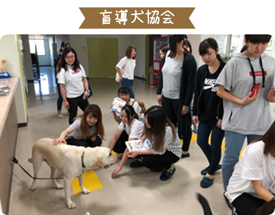 盲導犬協会