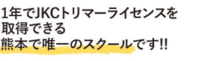 1年でJKCトリマーライセンスを取得できる福岡・熊本で唯一のスクールです!!